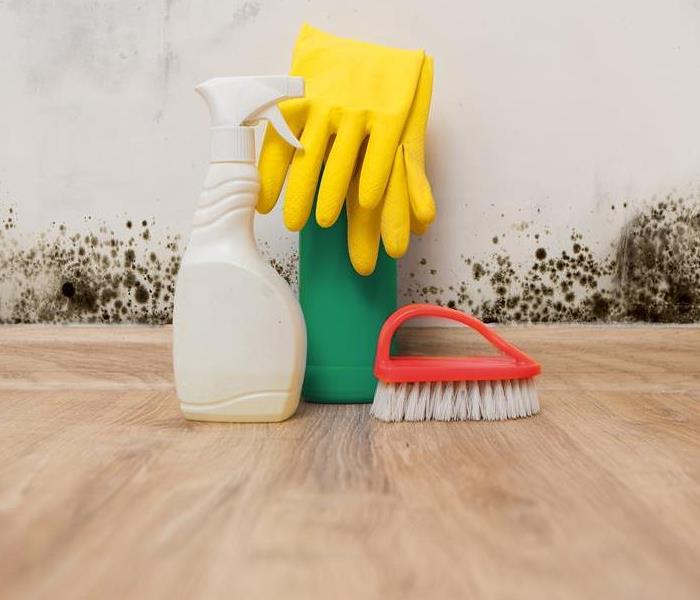 Mold Remediation Moisture, Mold, and Cleanup Tips