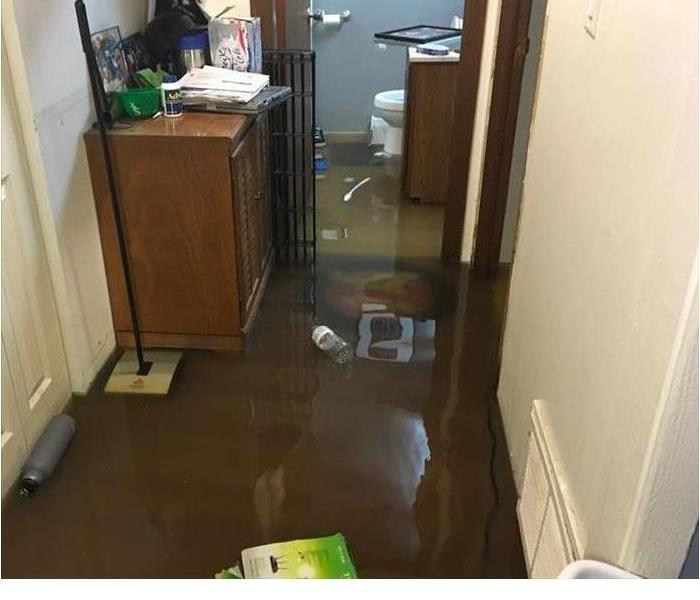 Water Damage Cleanup After a Sewer Flood: What You Can Expect