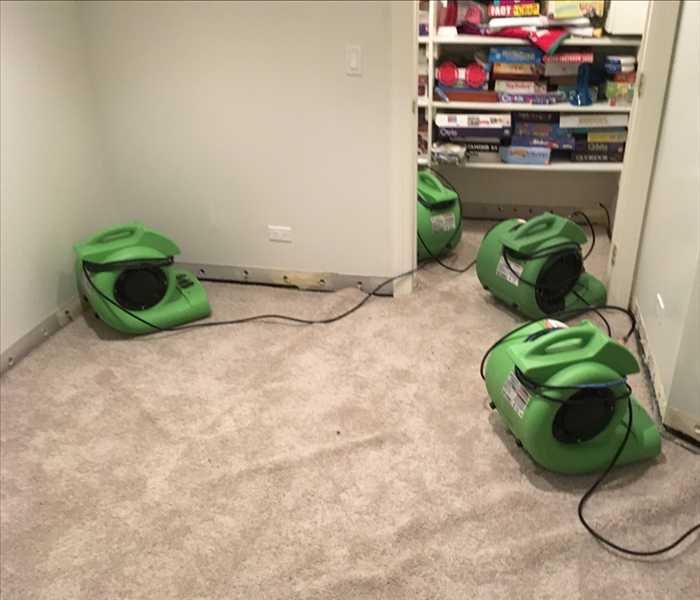 Water Damage Before You Pitch Water-Damaged Carpet, Read This