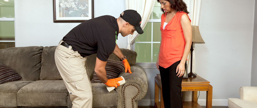 Schaumburg, IL carpet upholstery cleaning