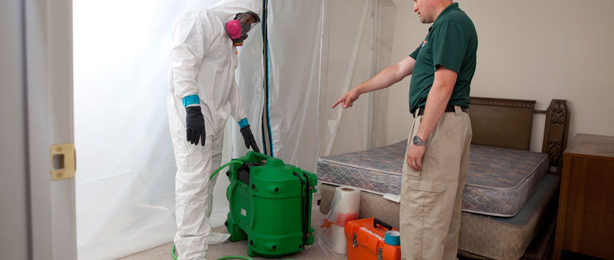 Schaumburg, IL mold removal process